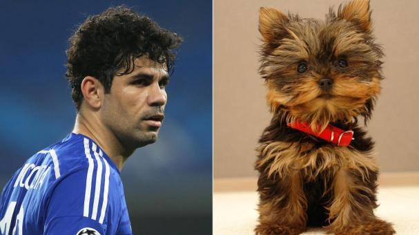 Diego Costa. Getty Images